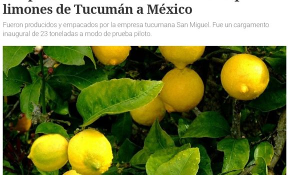 La primera exportación de limones a México consolidó su carga en Ruta 9