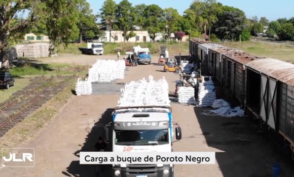 Almacenamiento y carga de porotos para exportación a Cuba